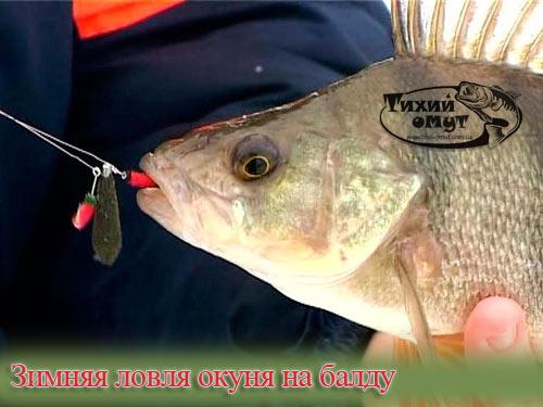 летняя рыбалка на балду видео бесплатно