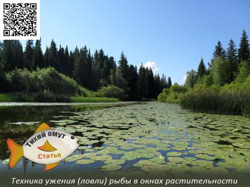 озеро глубокое кемеровская область рыбалка