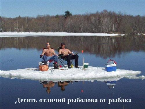 Смешные картинки про рыбаков (15 фото)
