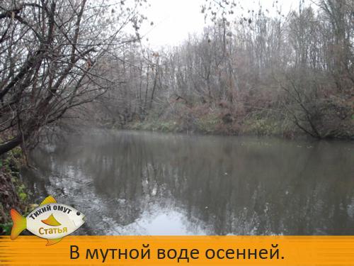 В мутной воде осенней.