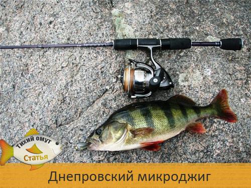 Днепровский микроджиг