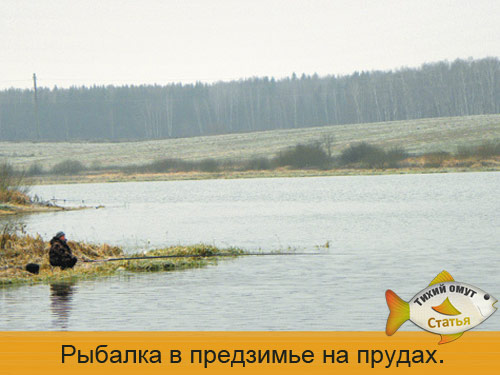 Рыбалка в предзимье на прудах.