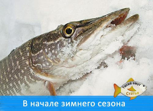 В начале зимнего сезона