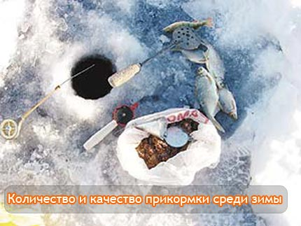 Количество и качество прикормки среди зимы