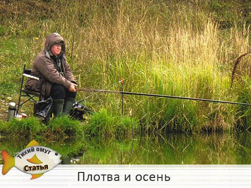 ловить плотву осенью