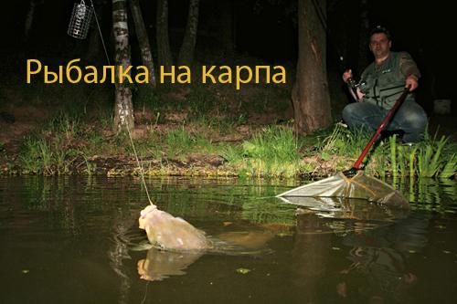 рыбалка карпа толстолобика