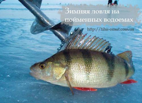 Зимняя ловля на пойменных водоемах