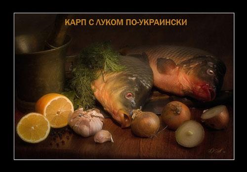 КАРП С ЛУКОМ ПО-УКРАИНСКИ