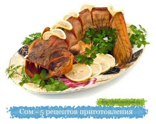 Сом - 5 рецептов приготовления