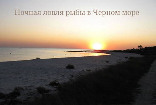 Ночная ловля рыбы в Черном море