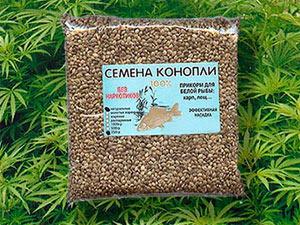 прикормка для рыбы из семян конопли