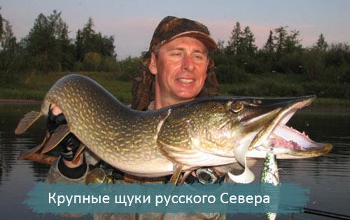 сайт стафиевского о рыбалке