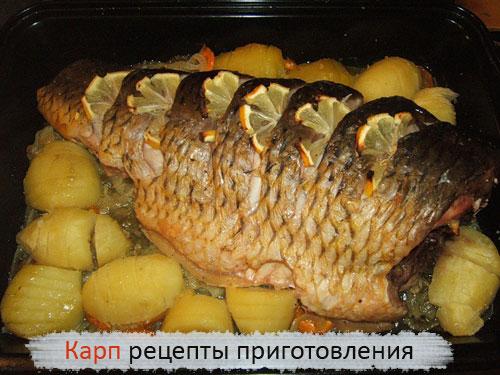 Карп рецепты приготовления