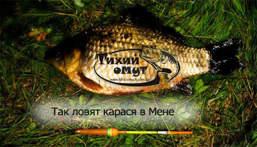 на что ловят рыбу летом