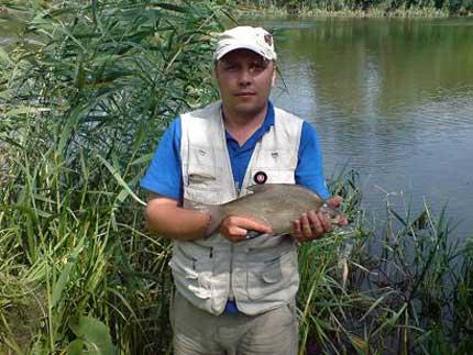 рыбалка фидер северск