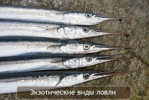 необычные снасти для рыбалки