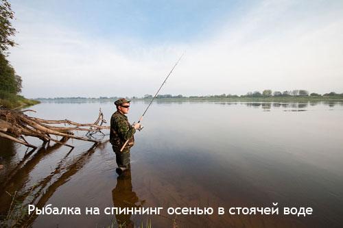 Рыбалка на спиннинг осенью в стоячей воде