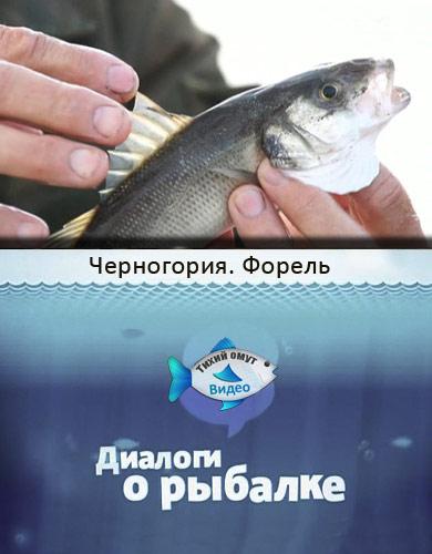 Диалоги о рыбалке. Черногория. Форель.