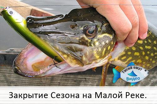 Закрытие Спиннингового Сезона на Малой Реке.