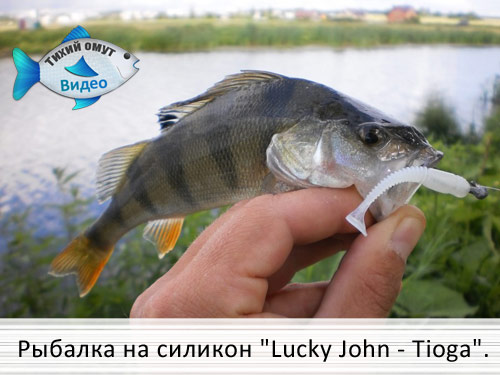 Рыбалка на силикон