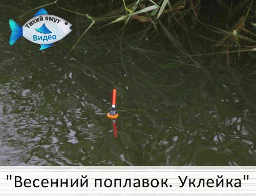 ловля уклейки по весне в поплавочную удочку