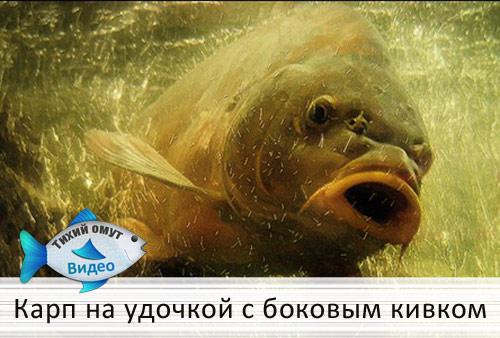 рыбалка с михалычем с кивком