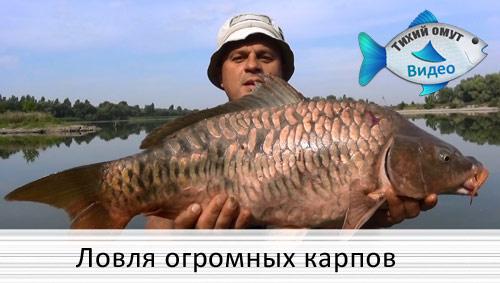 михалыч рыбак ютуб