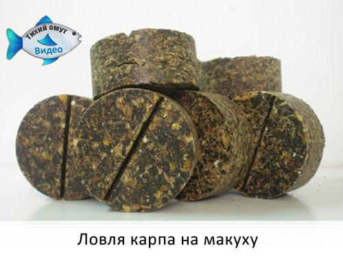 ловля карпа в мае в украине