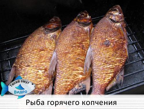 Копчение в домашних условиях - Рыба горячего копчения