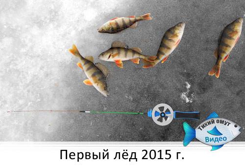 Первый лёд 2015 г.