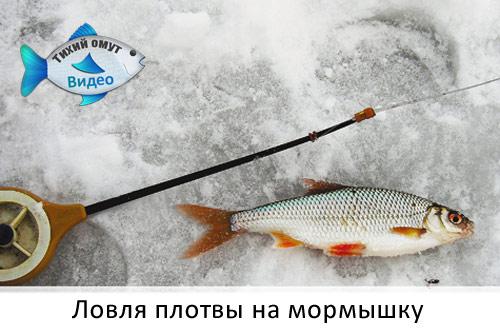 Зимние комбинезоны купить в днепропетровске