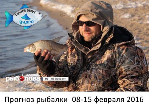 рыболовный календарь трофей