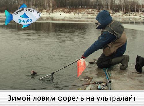 Зимой ловим форель на ультралайт