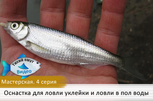 Мастерская. 4 серия - Оснастка для ловли уклейки и ловли в пол воды