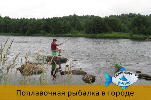 Поплавочная рыбалка в городе