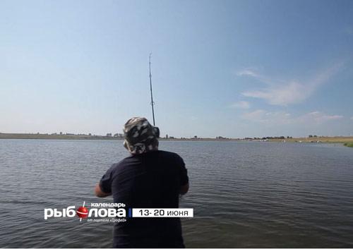 Календарь рыболова с 13 июня по 20 июня 2016