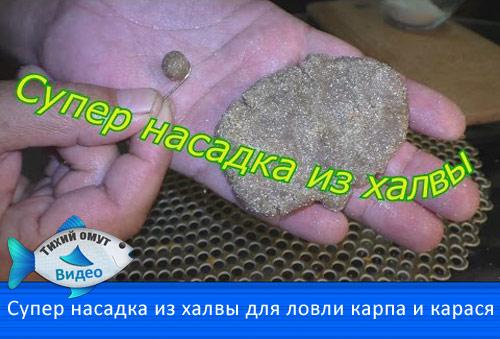 как приготовить тесто для ловли карпа
