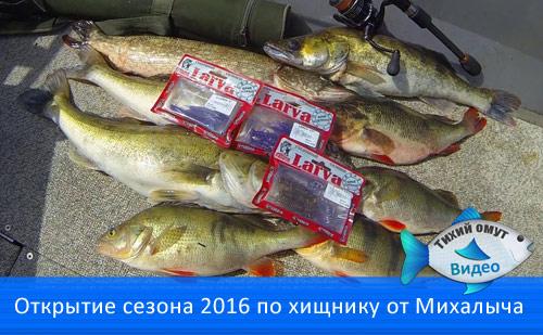 Открытие сезона 2016 по хищнику от Михалыча