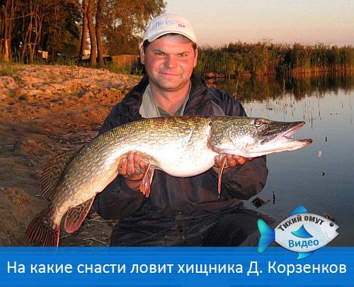 На какие снасти ловит хищника Дмитрий Корзенков