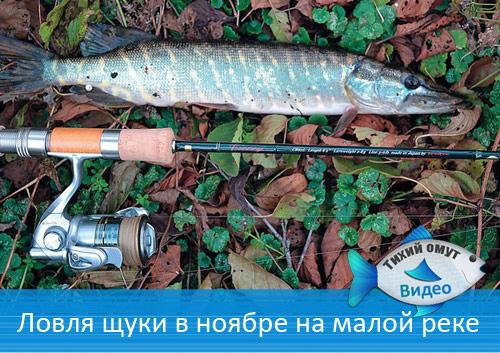 Как ловить щуку в ноябре на малой реке на микроджиг.