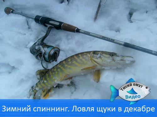 Зимний спиннинг. Ловля щуки в декабре