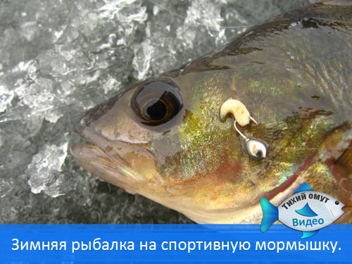Зимняя рыбалка на спортивную мормышку.
