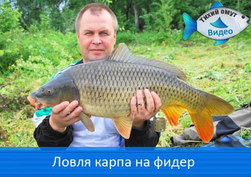 домашняя рыбалка сайт