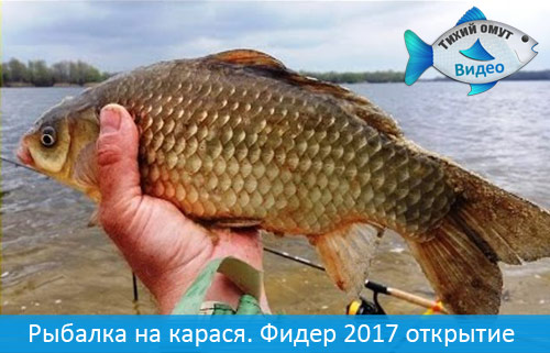 Рыбалка на карася | Фидер 2017 открытие