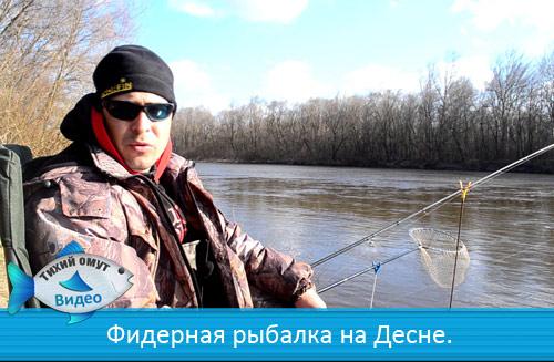 Фидерная рыбалка на Десне.