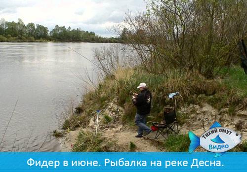 Фидер в июне. Рыбалка на реке Десна.