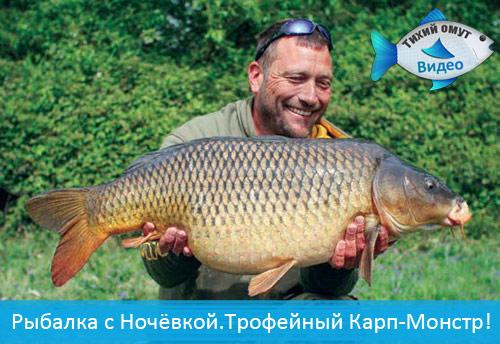 Рыбалка с Ночёвкой.Трофейный Карп-Монстр!