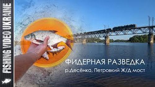 Фидерная рыбалка на новом месте: Петровский ж/д мост.