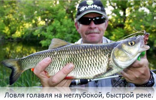 река кемь карелия рыбалка