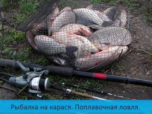 Рыбалка на карася. Поплавочная ловля.